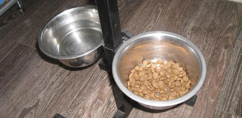 Собачий сухой корм