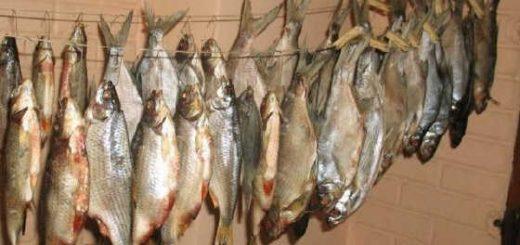 Как правильно сушить рыбу видео