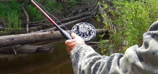 Как ловить карася на спиннинг