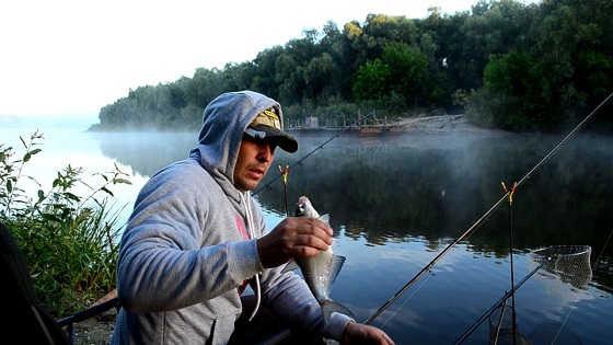 Ловля белой рыбы на реке Десна