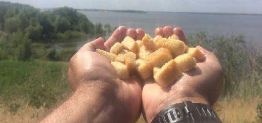 Ловля карпа на хлеб видео