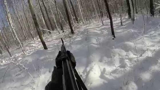 Охота на лося зимой видео