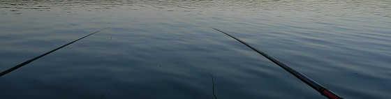 Рыбалка на озере Чернобутово