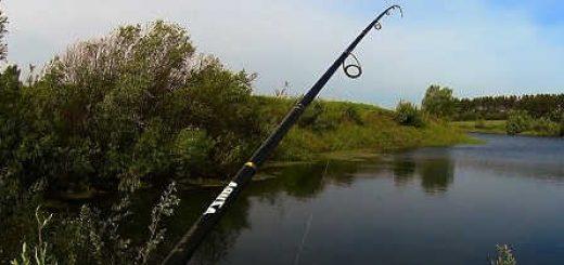 Рыбалка на спиннинг на пруду