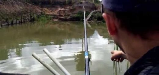 Рыбалка на своём пруду