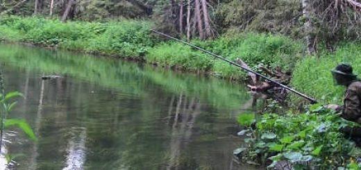 Рыбалка на таёжной речке