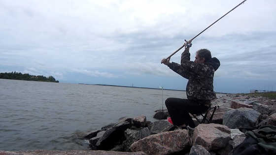 Рыбалка с фидером на Финском заливе видео