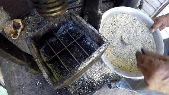 Способ изготовления жмыха