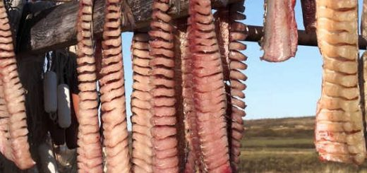 Приготовление юколы по Якутски