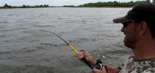 Рыбалка с ночевкой на Днепре