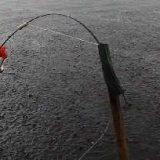 Два дня рыбалки на леща