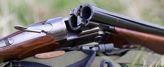 Как получить лицензию на оружие в 2018 году