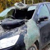 Медведь разорвал машину