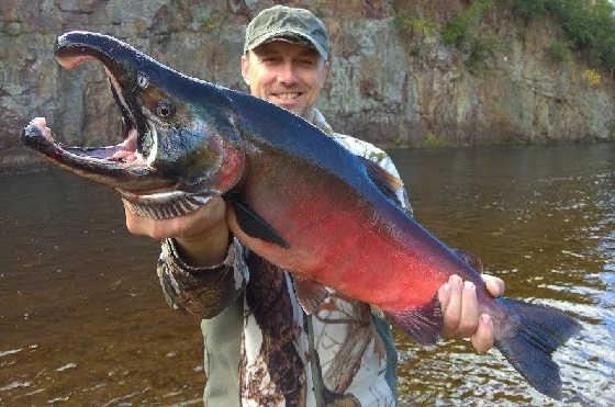 Рыбалка и приключения на таежной реке