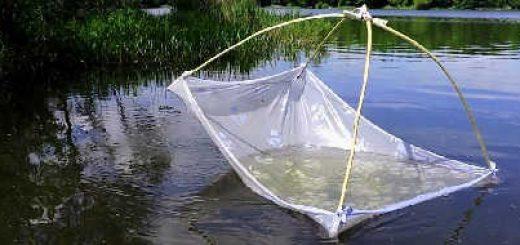 Рыбалка на паук в пересохшем ручье