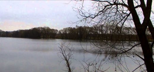 Рыбалка в ноябре на поплавок