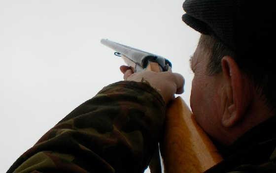 Как выбрать прикладистое ружье