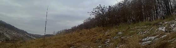 Охота 4 ноября
