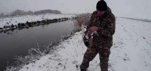 Охота на утку в последние дни сезона