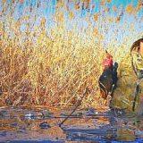 Охота на утку во льдах