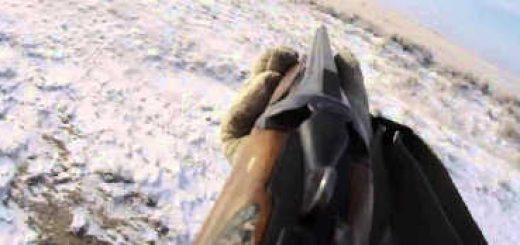 Охота на Зайца в 2018 в Ейском районе