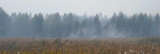 Осенне-зимний период охоты