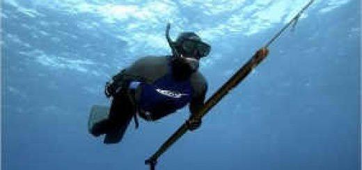 Подводная охота на стерлядь и судака