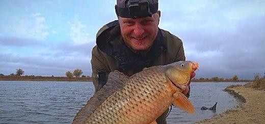Рыбалка на сазана поздней осенью