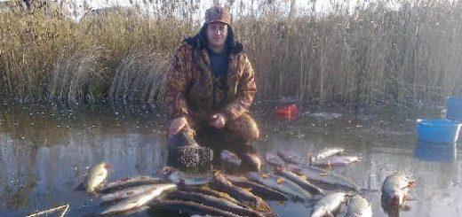 Рыбалка на жерлицы по перволедью
