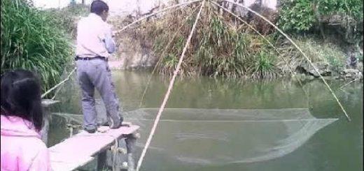 Рыбалка на сазана подъёмником
