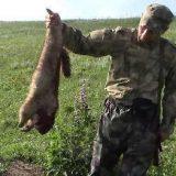 Охота на сурка с карабином Вепрь-308