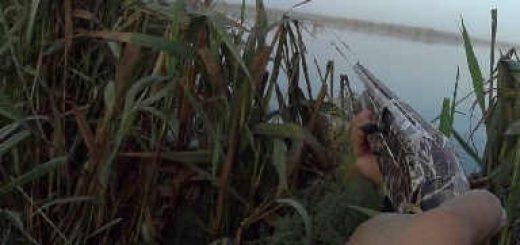Весеннее открытие охоты на утку