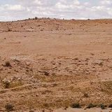 Охота в глинистых и солончаковых пустынях