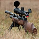 Охоты с пневматической винтовкой