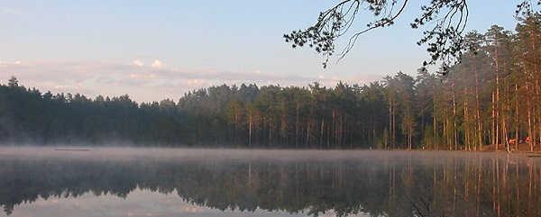 Загородный отдых в Ленинградской области