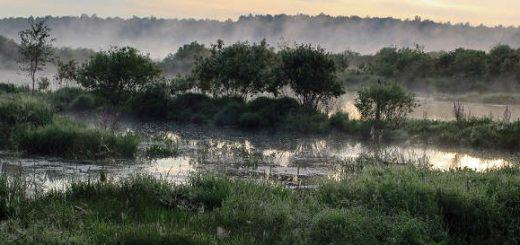 Преодоление топей на охоте