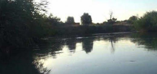 Летняя рыбалка на протоке Или