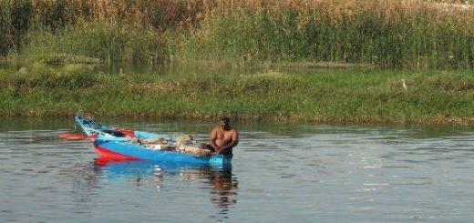 Рыбалка в Египте на реке Нил