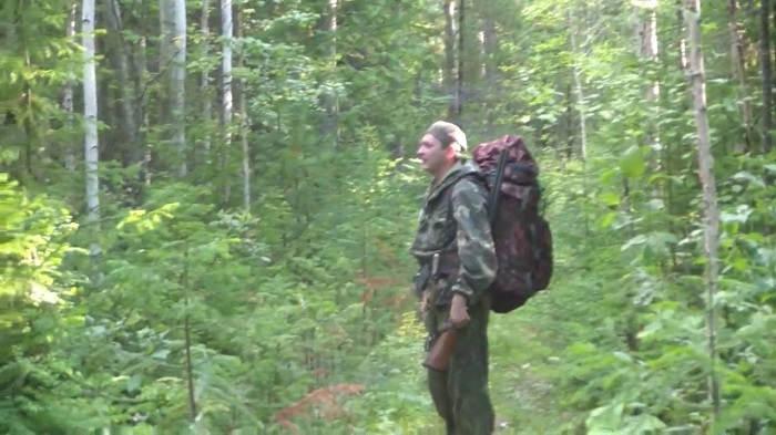 Летняя охота по тетеревиным выводкам