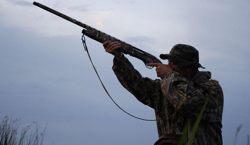 Запрет на охоту