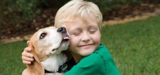 Как подружить детей с собакой