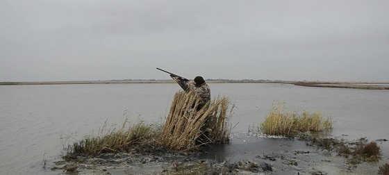 Охота на утку при сильном ветре