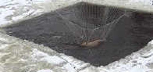 Убийца сазанов - паук-подъемник