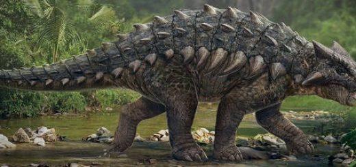 Отличительные черты динозавров