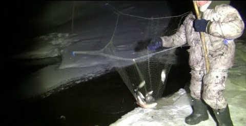 Рыбалка на пауки и круги ночью