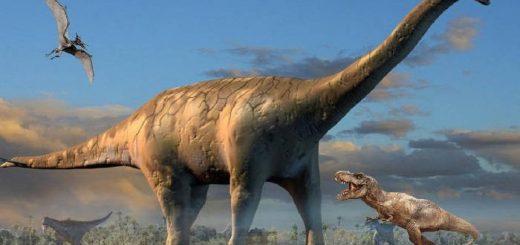 Откладывали ли яйца динозавры