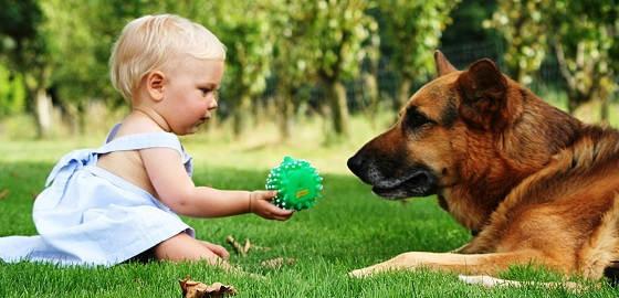 Как влияют домашние животные на детей