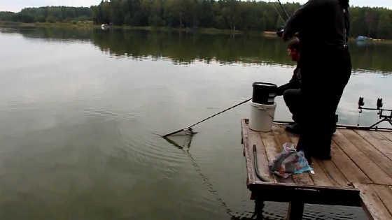 На озере рыбачим с чемпионом