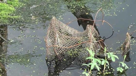 Один из старых способов ловли рыбы