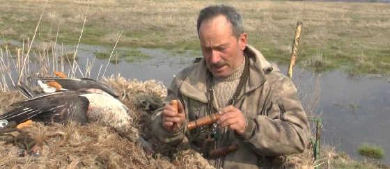 Охота с подсадными гусями и утками в Рязани